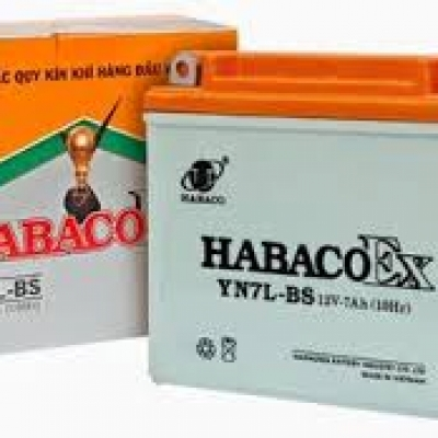 Ắc quy xe Magic Habaco
